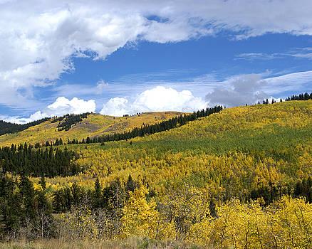 Kenosha Pass Colorado by D Winston