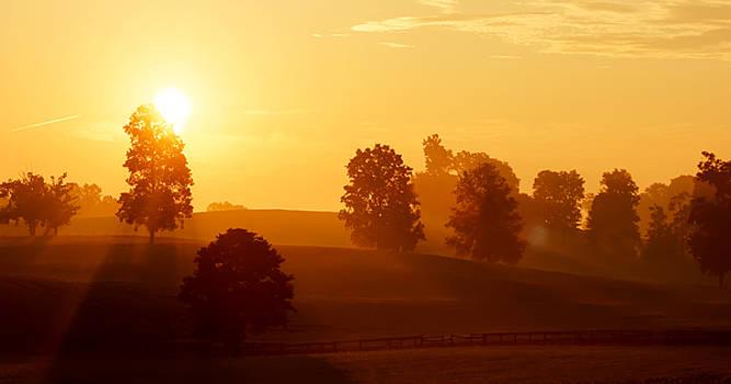 Kentucky Morning by Keith Bridgman
