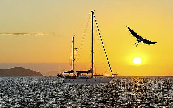 Keppel Island Sunset by Geoff Childs