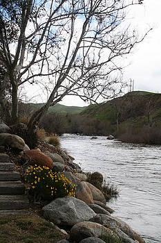 Kern River Winter by Ellen Young