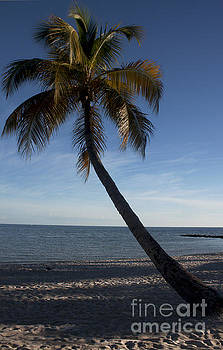 Key West Beach by Ivete Basso Photography