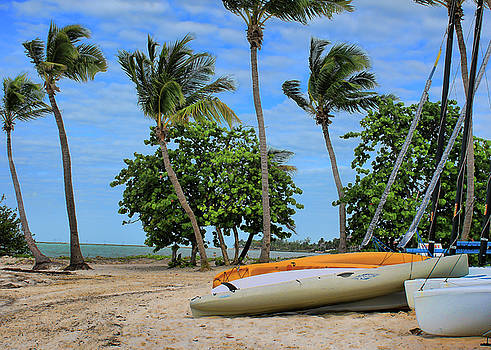 Key West - Sailboats on Beach 3 by Ron Grafe