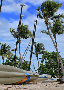 Key West - Sailboats on Beach by Ron Grafe