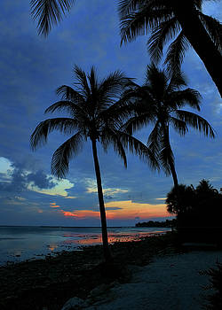 Key West Sunset No 2 by Ron Grafe