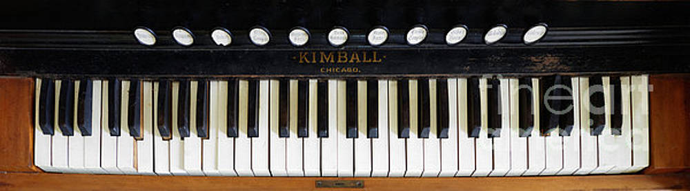 Kimball - Chicago by Liane Wright