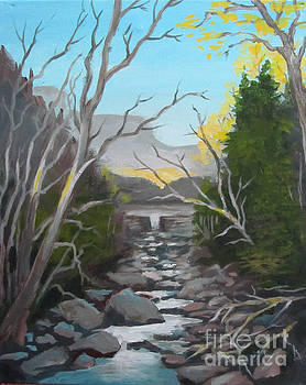 Kim's Creek by Carol Hart