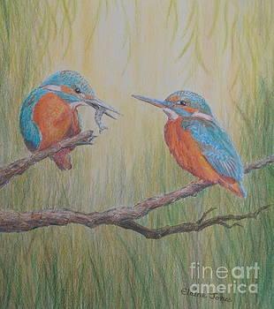 Kingfisher Pair by Elaine Jones