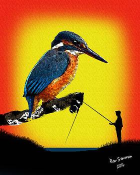 Kingfishers by Peter Stevenson