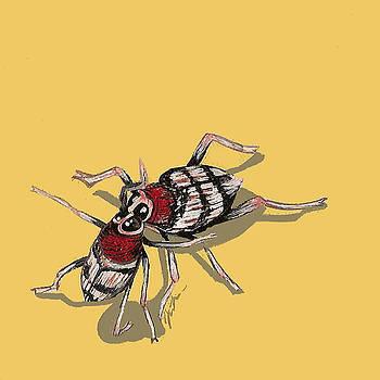 Kissing Weevils by Jude Labuszewski