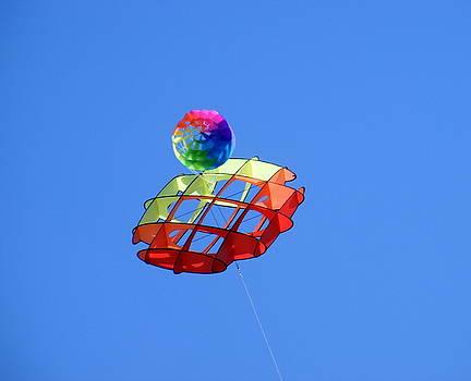 Kite Flying High by Elena Tudor