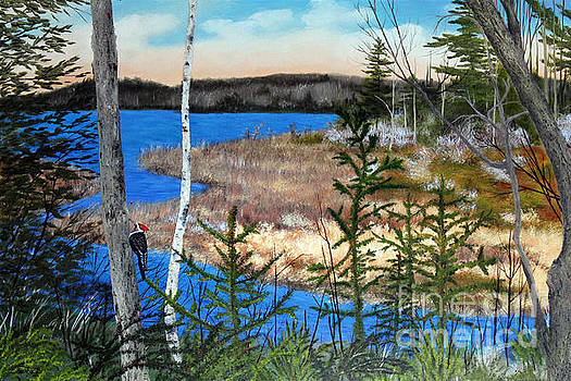 Knights Pond Early Spring by Laura Tasheiko