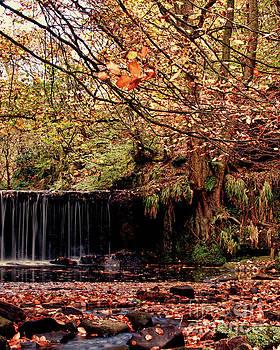 Knypersley Falls by Baggieoldboy