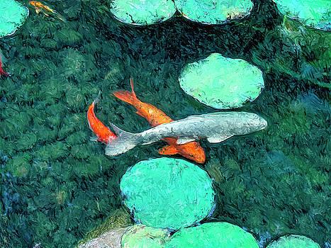 Dominic Piperata - Koi Pond 3