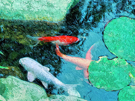 Dominic Piperata - Koi Pond 4
