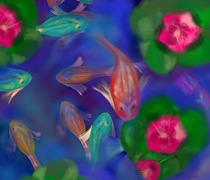 Koi pond by Christine Fournier