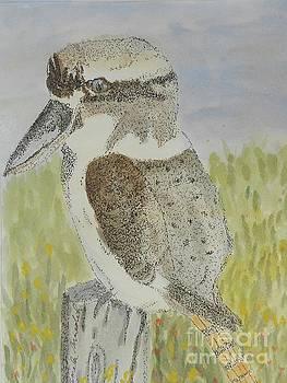 Kookaburra by Pamela Meredith