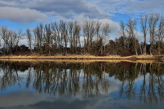 Kootenai River Reflection by David Marr