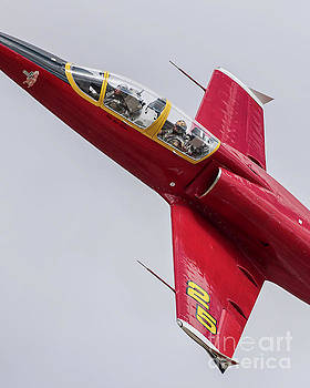 Czec 6 Up Close And Personal by Steve Rowland