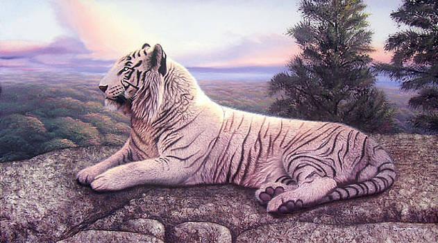 La cumbre del rey blanco by Sergio Gaspar
