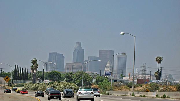 LA Freeway by Sean Owens