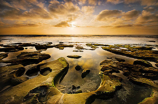 La Jolla Horseshoe by Joel Olives