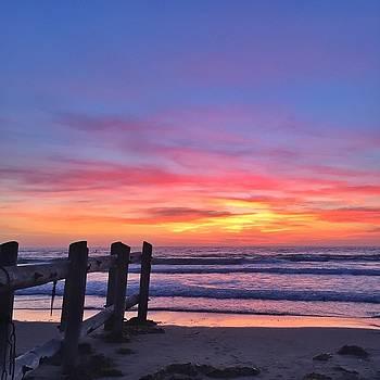 La Jolla Shores by Caroline Lomeli