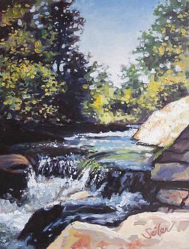 La Salle Falls by Larry Seiler