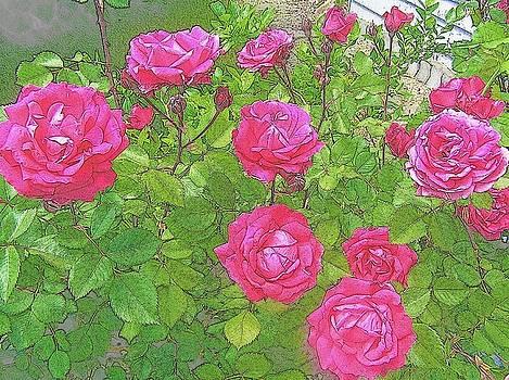 La Vie en Roses by Jen White