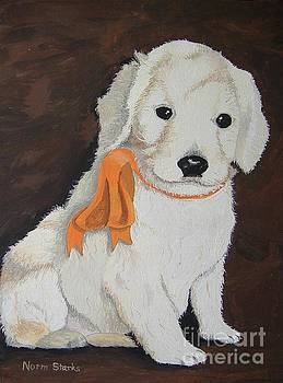 Labradoodle Pet Portrait by Norm Starks
