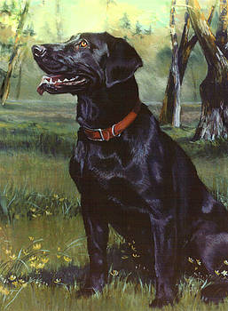 Labrador Retriever by Jean Hildebrant