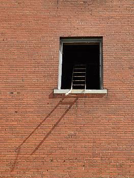 Gothicolors Donna Snyder - Ladder