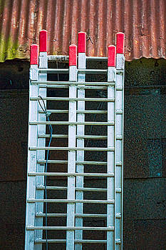 Ladder Shingles Roof by Robert FERD Frank
