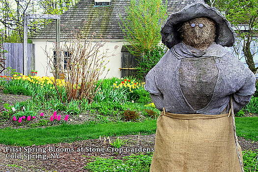 Lady of the Gardens Stone Crop Gardens NY by DazzleMe Photography