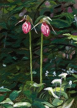 Lady Slipper by Lynne Reichhart