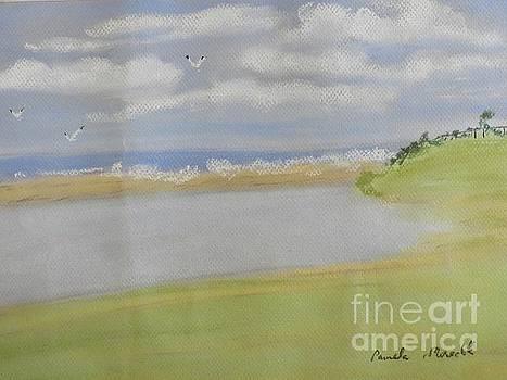 Lagoon in Wollongong by Pamela Meredith