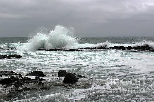 Laguna Beach Gloom by Cheryl Del Toro