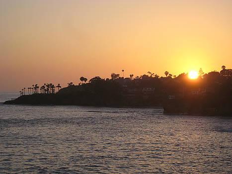 Laguna Sunset by Renee Antos
