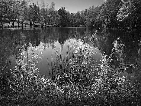 Lake at Musgrove Mill State Historic Site by Kelly Hazel