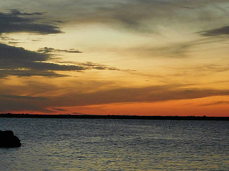 Lake Erie Bronze Sunset by Nancy Spirakus