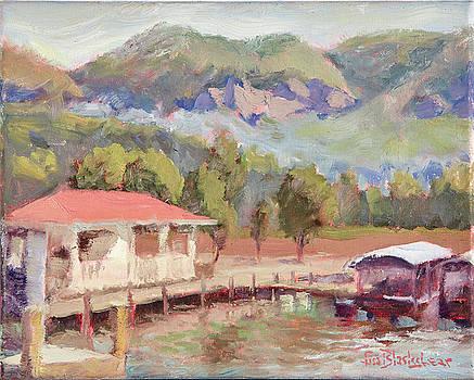 Lake Lure Marina in the Morning by Lisa Blackshear