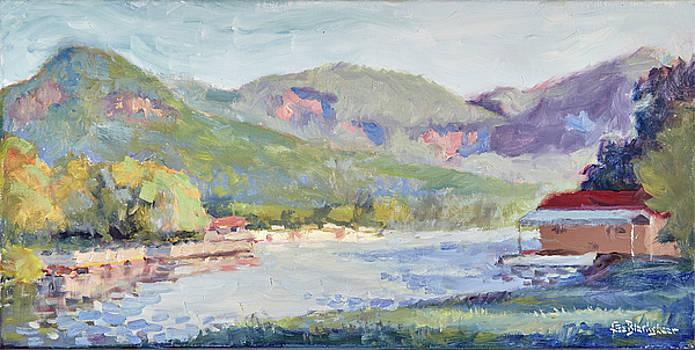 Lake Lure Panorama Morning Light by Lisa Blackshear