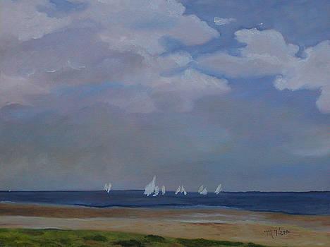 Lake Michigan Sails by Marcia  Hero