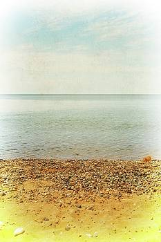 Lake Michigan with Stony Shore by Michelle Calkins