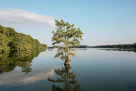 Lake Providence Louisiana by Scott Pellegrin