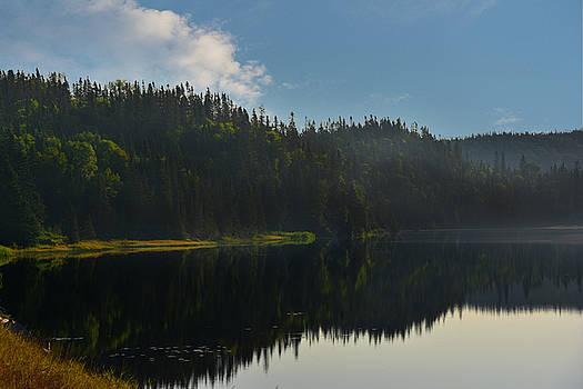 Judy Hall-Folde - Lake Reflections