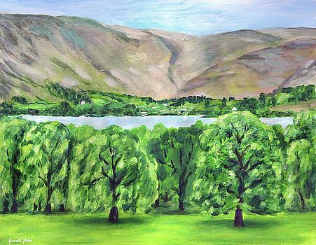Lake Ullswater by Ronald Haber