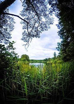 Lake View by Nicklas Gustafsson