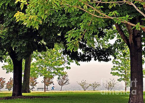 Lake Walk by Lydia Holly