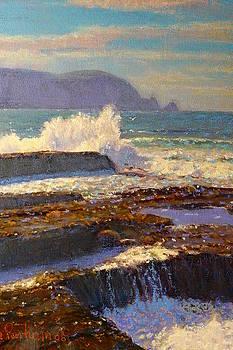 Terry Perham - Land meets sea