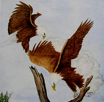 Landing by Sandra Maddox